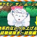 【ポケモン サン ムーン】効率的なレベル上げの方法【序盤編】